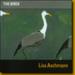 span classtitleThe Birdsspanspan classsubtitleLisa Aschmannspan